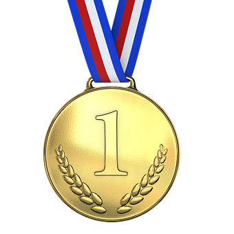 Blogger of the Quarter Medal